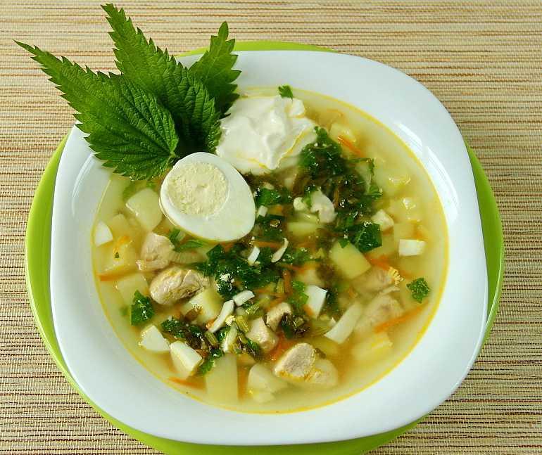 Щавелевый суп: классические рецепты супа из щавеля с яйцом и не только