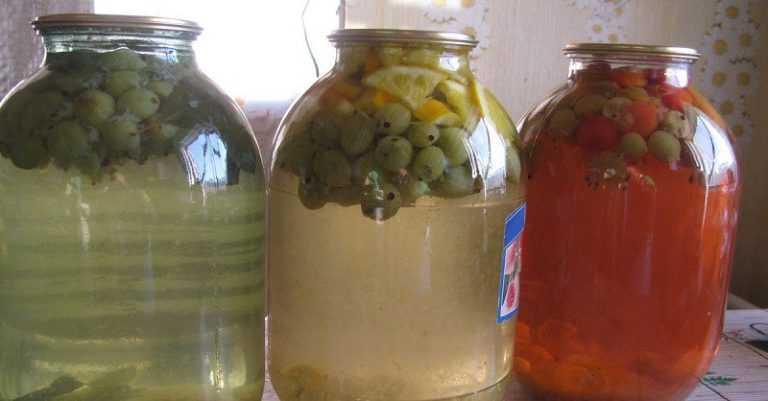Компот из черники - полезные свойства и как вкусно сварить с яблоками, земляникой или смородиной