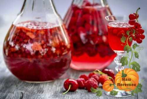 Вино из варенья в домашних условиях: простые рецепты приготовления своими руками