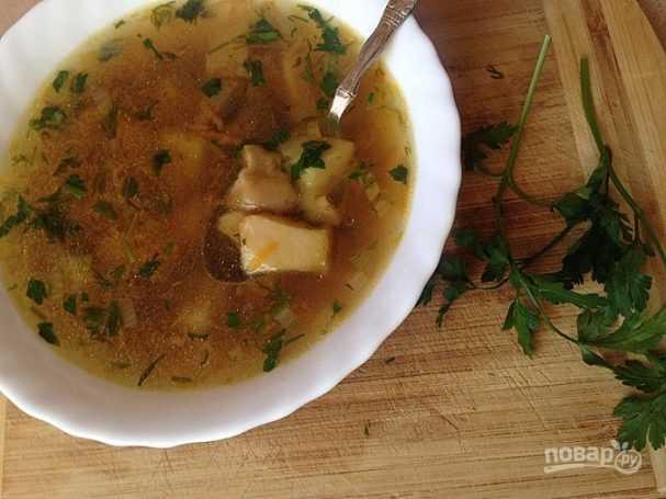 Суп из опят замороженных – аромат лета: рецепт с фото и видео