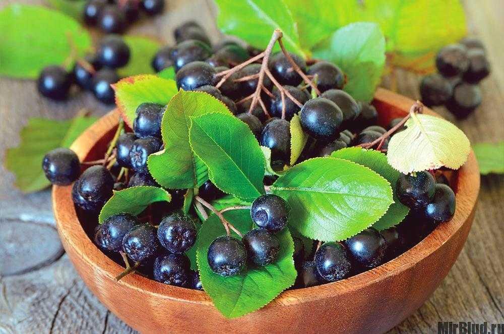 Сушеные ягоды: 27 рецептов заготовок на зиму » сусеки