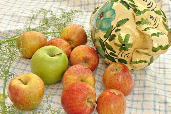 Мочёные яблоки на зиму: лучшие рецепты приготовления в домашних условиях (в банках, в бочке, с сахаром, хреном, медом и горчицей)