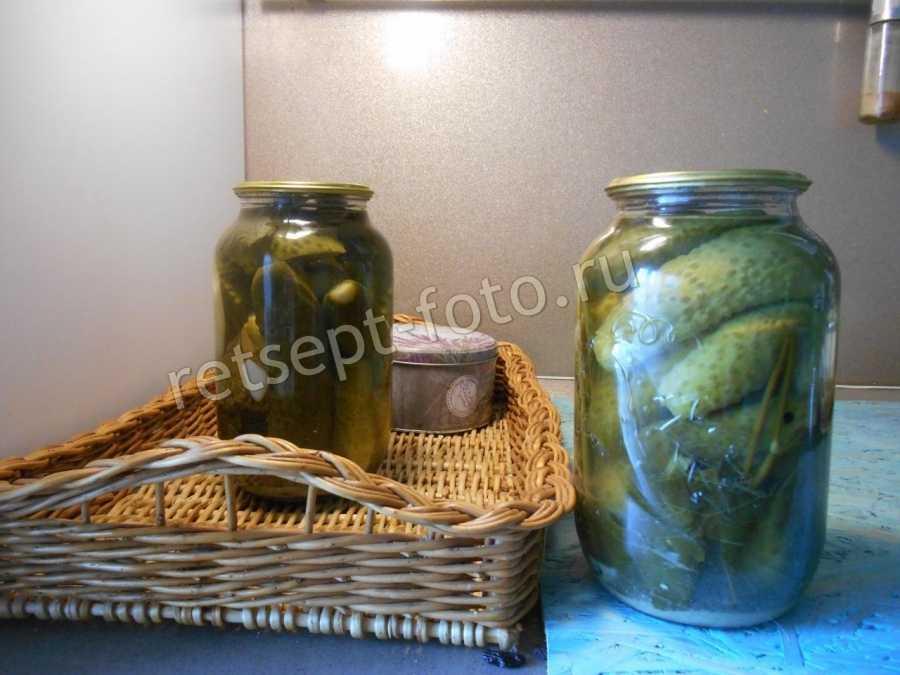 Огурцы в горчичной заливке на зиму — рецепты на 4 кг и 5 кг