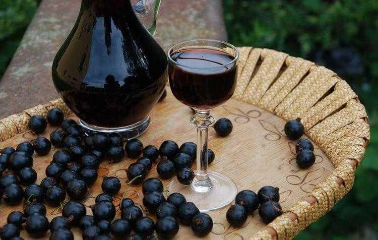 Настойка из черники — 4 рецепта в домашних условиях