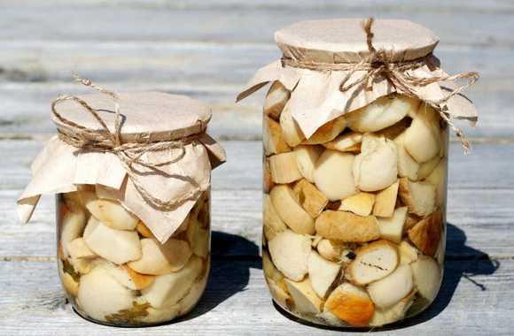 Вкусные жареные подосиновики с картошкой, луком, сметаной: пошаговые рецепты с фото