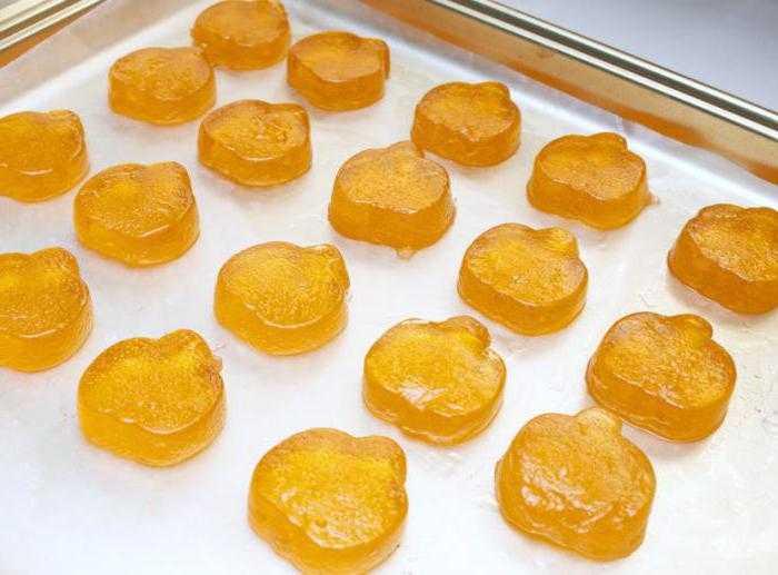 Мармелад в домашних условиях - как готовить жевательный, натуральный, на фруктовом и ягодном соке
