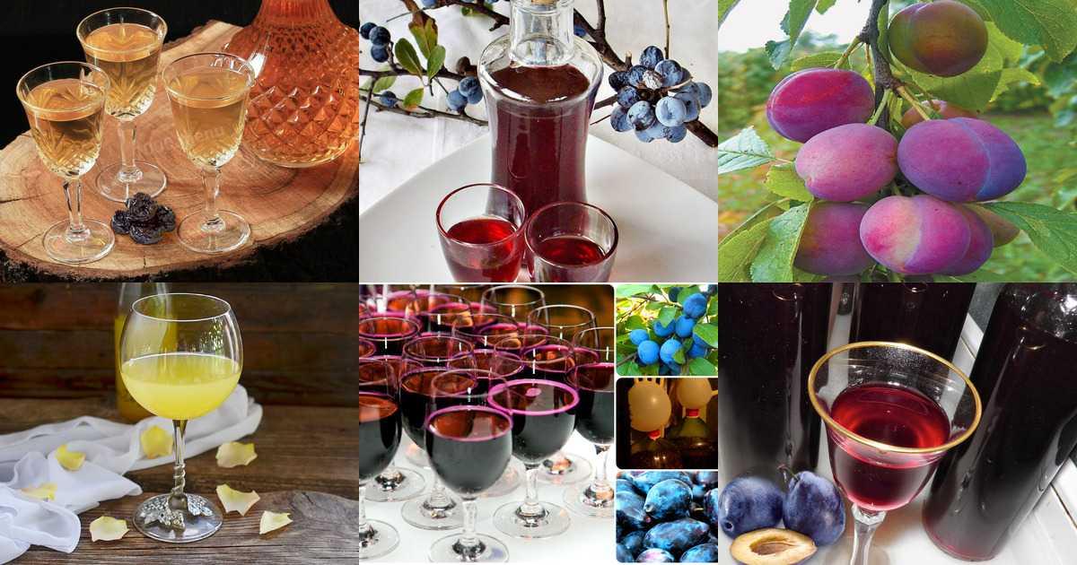Вино из сливы с косточками