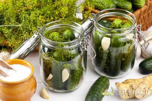 Закрываем на зиму вкуснейшие хрустящие огурцы: рецепты с водкой