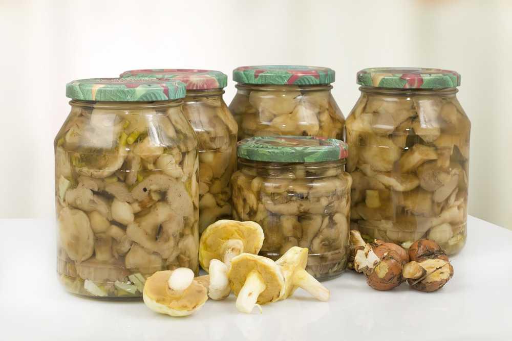Как правильно замораживать на зиму белые грибы?