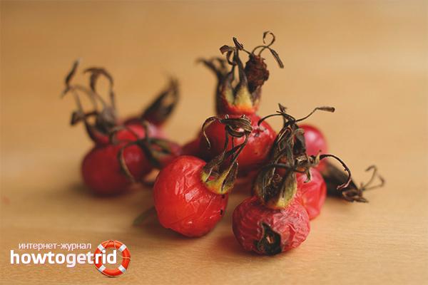 Как правильно сушить шиповник в домашних условиях: сушка плодов, листьев и цветов » сусеки