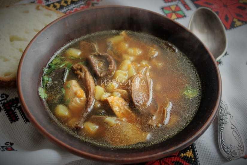 Суп из сушеных грибов — лучшие рецепты. как правильно и вкусно сварить суп из сушеных грибов.
