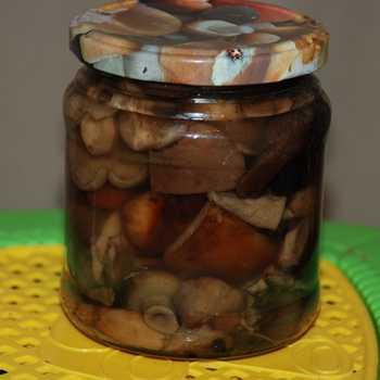 Заготовки из груздей на зиму: 7 лучших рецептов