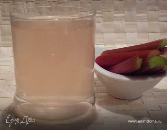 Компот из ревеня на зиму пошаговый рецепт быстро и просто от ирины наумовой