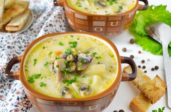 Сырный крем суп рецепт с фото пошагово и видео - 1000.menu
