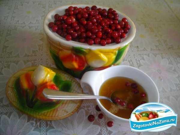 Брусника: полезные свойства и простые рецепты для здоровья