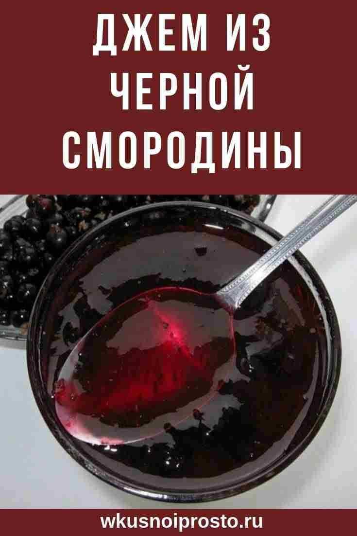 Желе из красной смородины на зиму: простые рецепты без стерилизации, как приготовить в домашних условиях без желатина через соковыжималку и как делается сок