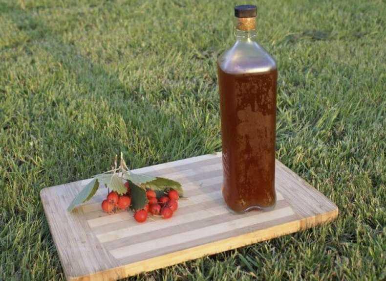 Как сделать мацерат - ароматную водку