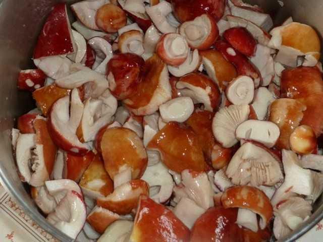 Засолка грибов, грибы на зиму, горячая засолка грибов, маринование грибов, рецепты засолки грибов, засолка груздей