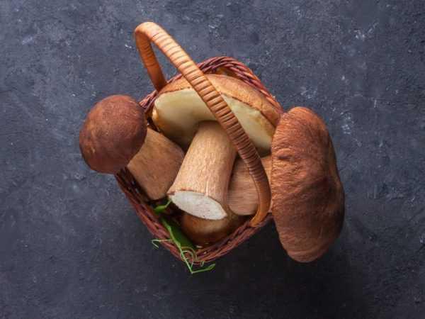 Грузди на зиму горячий способ рецепт с фото пошагово - 1000.menu