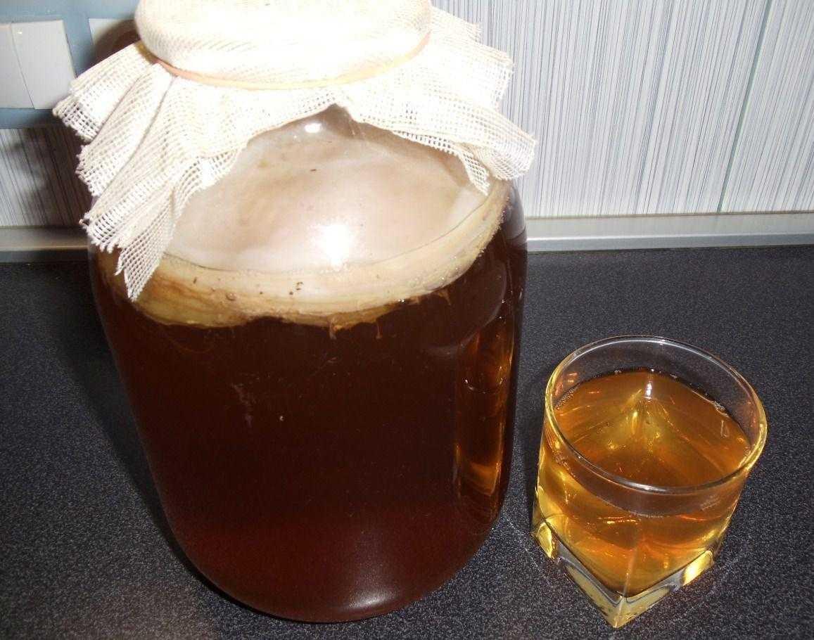 Как приготовить напиток из чайного гриба. как правильно ухаживать за чайным грибом. п/о, видео.