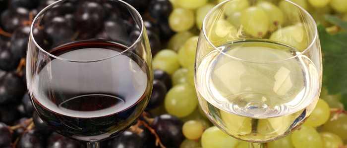 Рецепты приготовления домашнего вина из березового сока