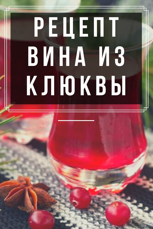 Вино из царской ягоды. как сделать домашнее вино из брусники?