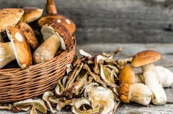 Замороженные грибы: как правильно хранить, срок годности