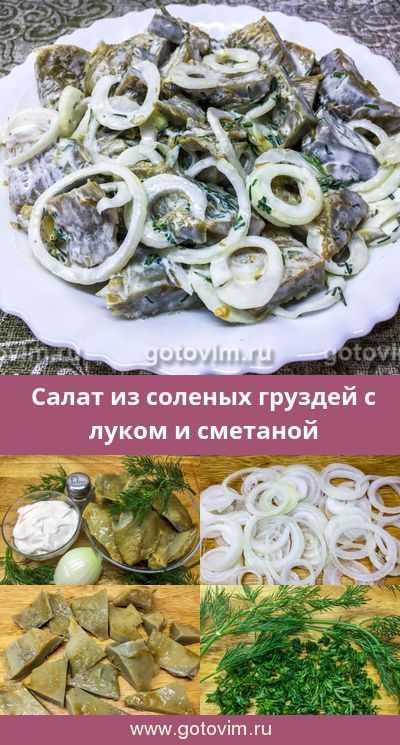 Груздянка из свежих груздей: как сварить суп, пошаговые рецепты с фото - растения и огород
