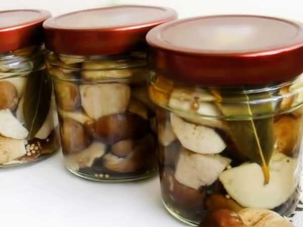 Маринованные подберезовики на зиму — пошаговый рецепт с фото