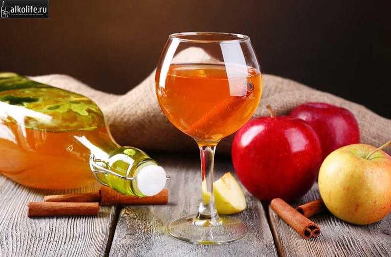 Простое и вкусное вино из бузины