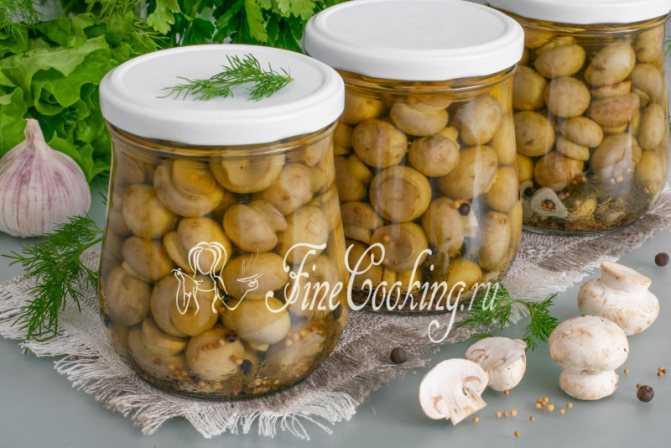 Соление грибов горячим и холодным способами