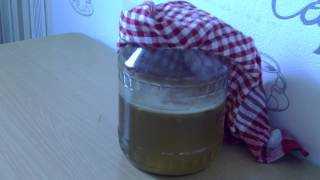 Как разделить чайный гриб. какую часть нужно отделять для размножения? отделяем верхний пласт.
