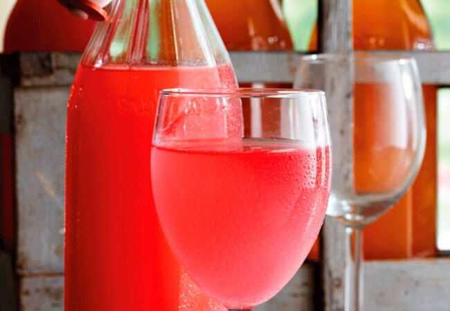 Как самостоятельно приготовить вино из ревеня - agroflora.ru