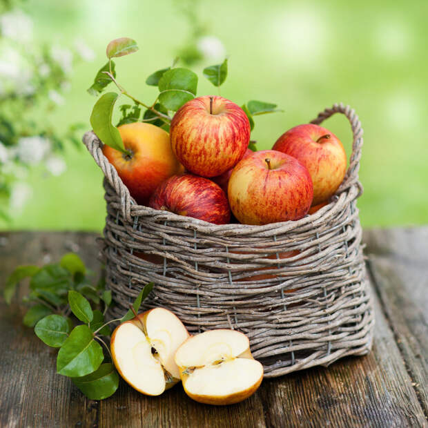 Моченые яблоки: рецепт в домашних условиях в банках