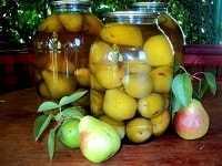 Компот из груши на зиму: классика и простые рецепты ассорти