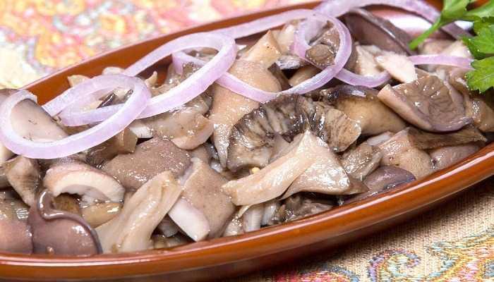 Закуска из грибов на зиму – пальчики оближешь: рецепт с фото и видео