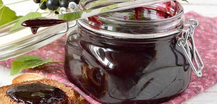 Черная смородина на зиму - простые рецепты без варки (смородина с сахаром, варенье, желе)