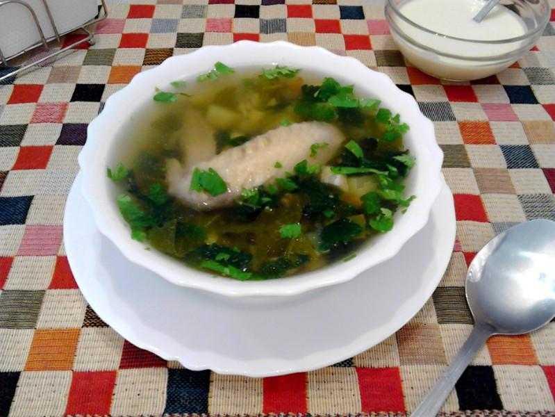 Щавелевый суп, простые и вкусные рецепты летнего холодного супа с мясом, яйцом и зеленью