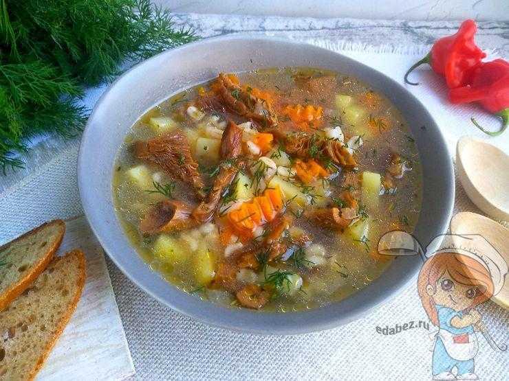 Суп из соленых груздей рецепт. как правильно приготовить вкусный суп из груздей, суп грибной как сварить. грибной суп-пюре из груздей по французскому рецепту
