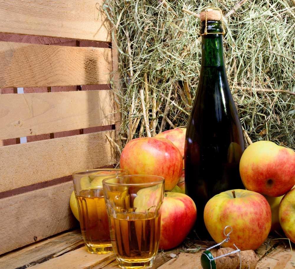 Вино из яблочного сока в домашних условиях — 3 простых рецепта яблочного вина