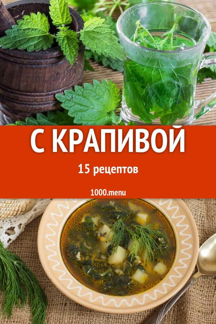 Крапива: лечебные свойства, противопоказания | food and health