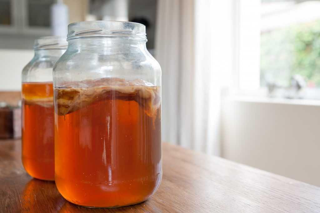 Можно ли пить чайный гриб при подагре - про заболевания
