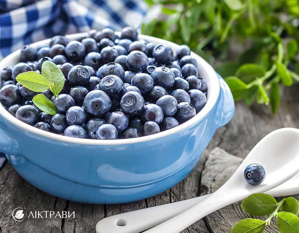 Сушка черники в домашних условиях, выбор оптимального варианта приготовления ягоды впрок. Как правильно подготовить, и что следует знать о ее хранении.