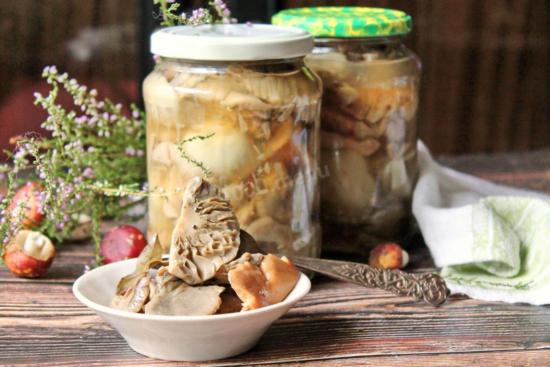 Топ 12 рецептов приготовления соленых сыроежек холодным и горячим способом на зиму