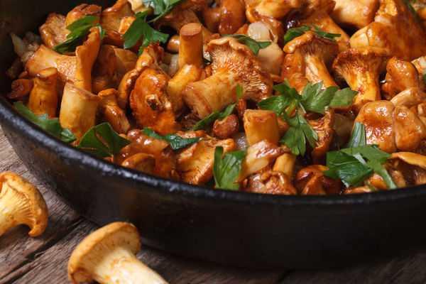 Рецепты рыжиков с картошкой в сметане: как приготовить жареные и тушеные грибные блюда
