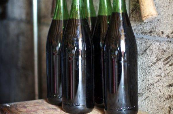 Вино из винограда в домашних условиях: рецепт приготовления