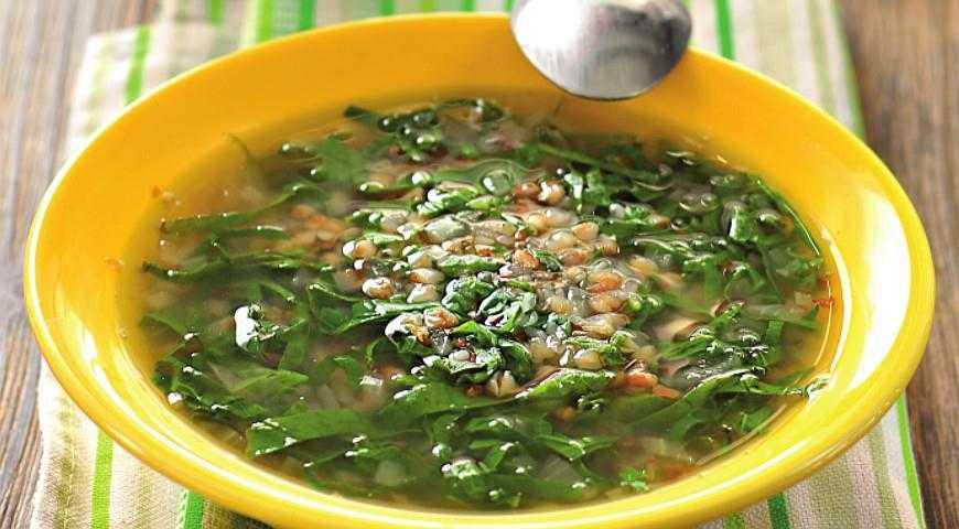 Как приготовить зелёные щи из молодой крапивы - 5 простых рецептов