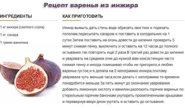 Польза и вред сушеного инжира для организма человека