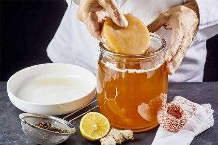 Как пить чайный гриб при подагре. Насколько это полезно. Какие существуют рецепты с дополнительными ингредиентами, в каких количествах принимать.