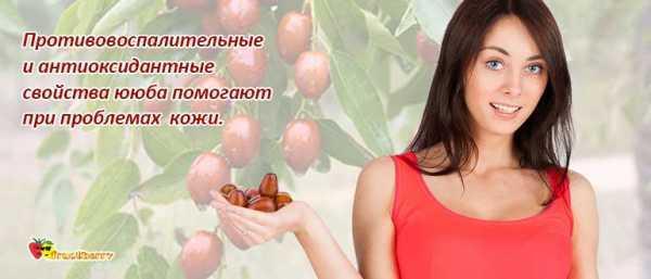 Зизифус рецепты приготовления консервация. рецепт: зизифус в пьяном сиропе - сладкая и полезная заготовка - смотреть видео